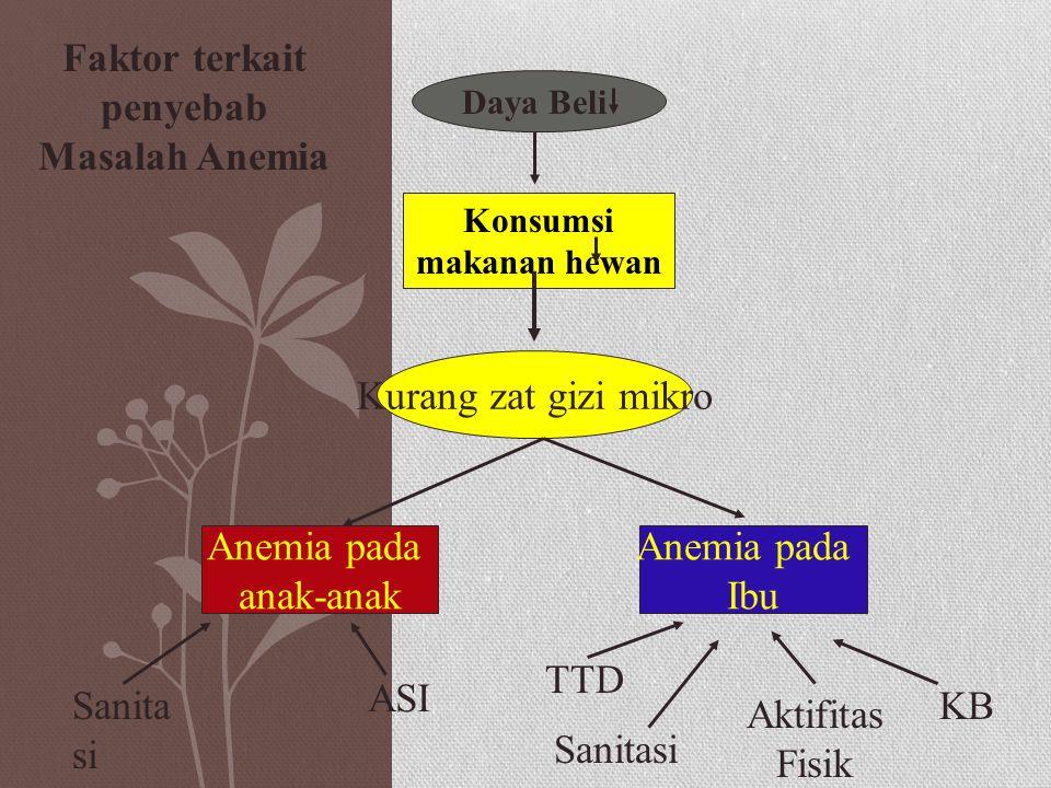 Daya Beli Konsumsi makanan hewan Kurang zat gizi mikro Anemia pada anak-anak Anemia pada Ibu Sanita si ASI Aktifitas Fisik Sanitasi TTD KB Faktor terkait penyebab Masalah Anemia