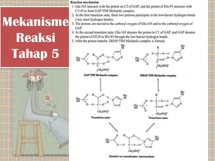 Mekanisme Reaksi Tahap 5