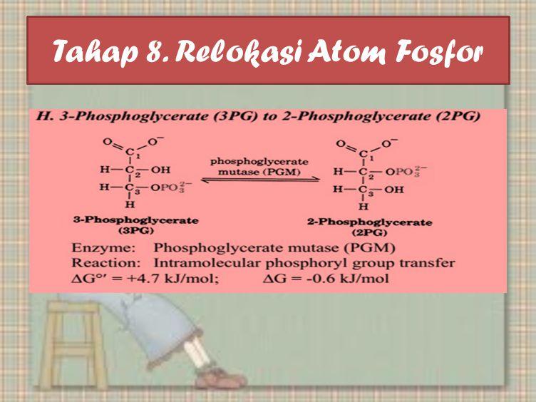 Tahap 8. Relokasi Atom Fosfor
