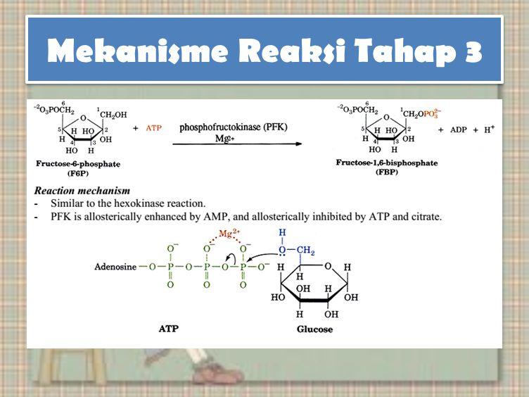 Mekanisme Reaksi Tahap 3