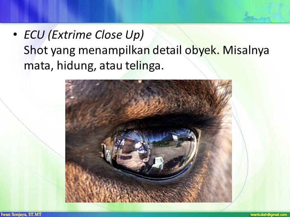 ECU (Extrime Close Up) Shot yang menampilkan detail obyek. Misalnya mata, hidung, atau telinga.