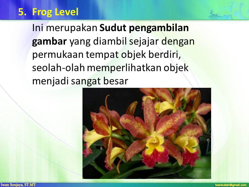 5.Frog Level Ini merupakan Sudut pengambilan gambar yang diambil sejajar dengan permukaan tempat objek berdiri, seolah-olah memperlihatkan objek menja