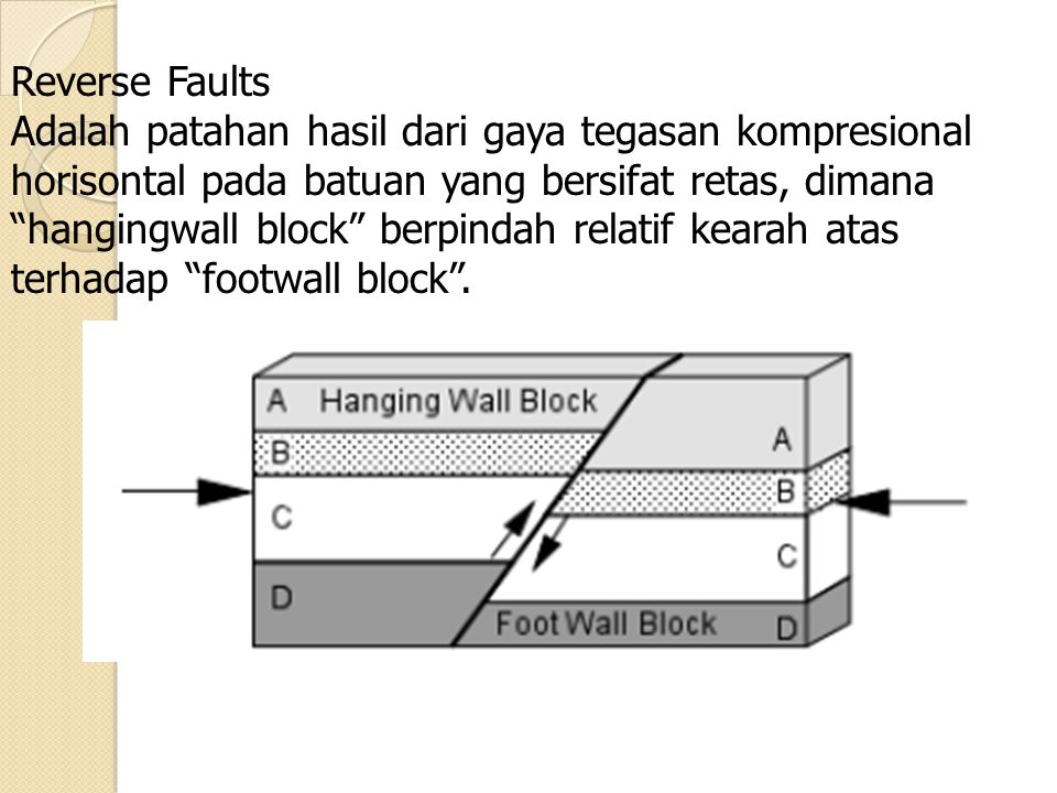 "Reverse Faults Adalah patahan hasil dari gaya tegasan kompresional horisontal pada batuan yang bersifat retas, dimana ""hangingwall block"" berpindah re"