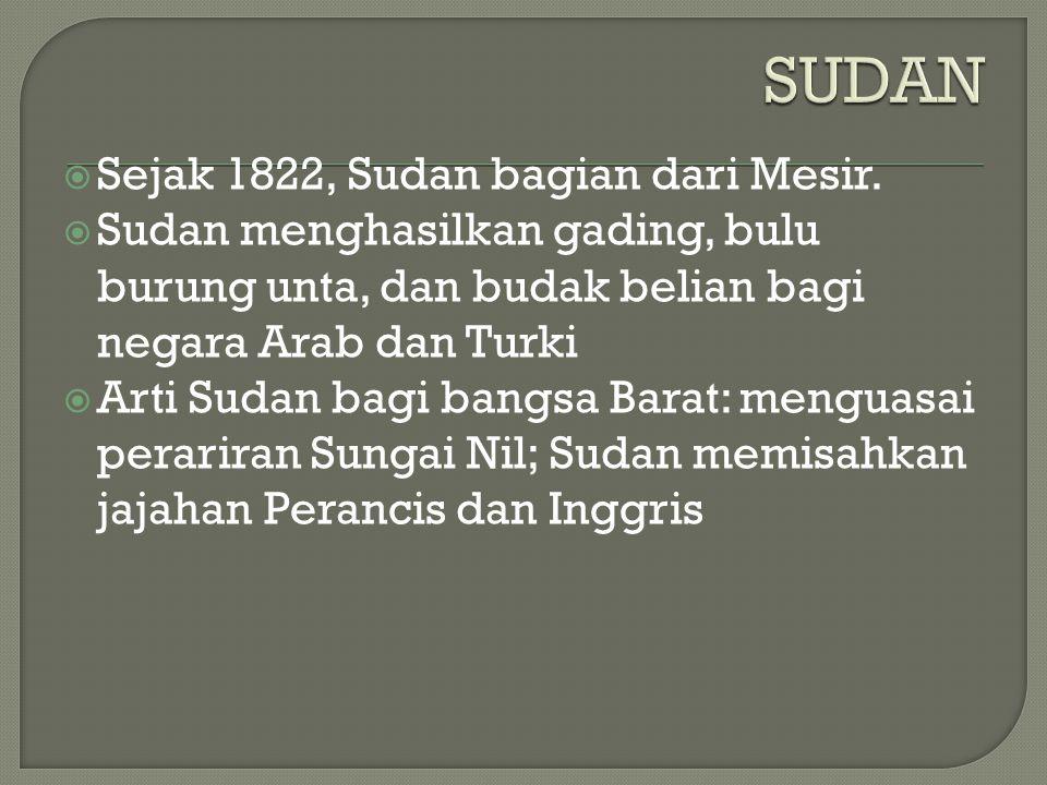  Sejak 1822, Sudan bagian dari Mesir.  Sudan menghasilkan gading, bulu burung unta, dan budak belian bagi negara Arab dan Turki  Arti Sudan bagi ba