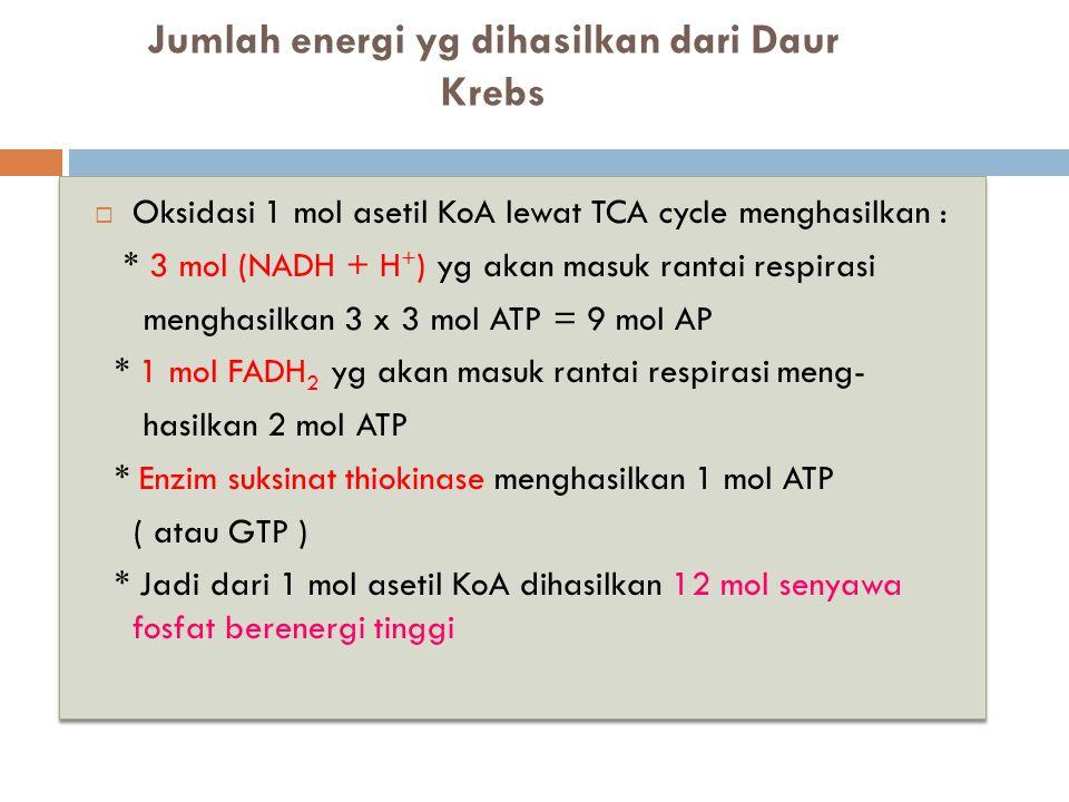Jumlah energi yg dihasilkan dari Daur Krebs  Oksidasi 1 mol asetil KoA lewat TCA cycle menghasilkan : * 3 mol (NADH + H + ) yg akan masuk rantai resp