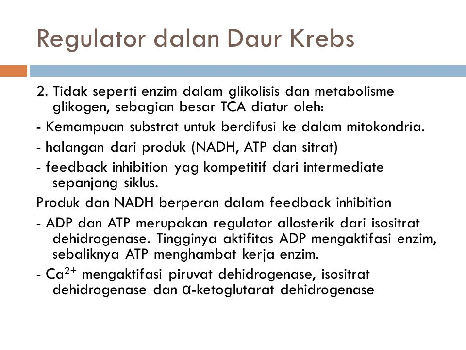 Regulator dalan Daur Krebs 2.