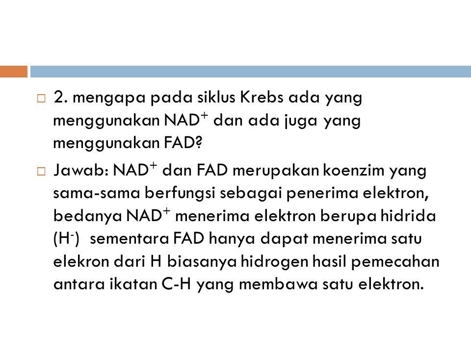  2. mengapa pada siklus Krebs ada yang menggunakan NAD + dan ada juga yang menggunakan FAD?  Jawab: NAD + dan FAD merupakan koenzim yang sama-sama b