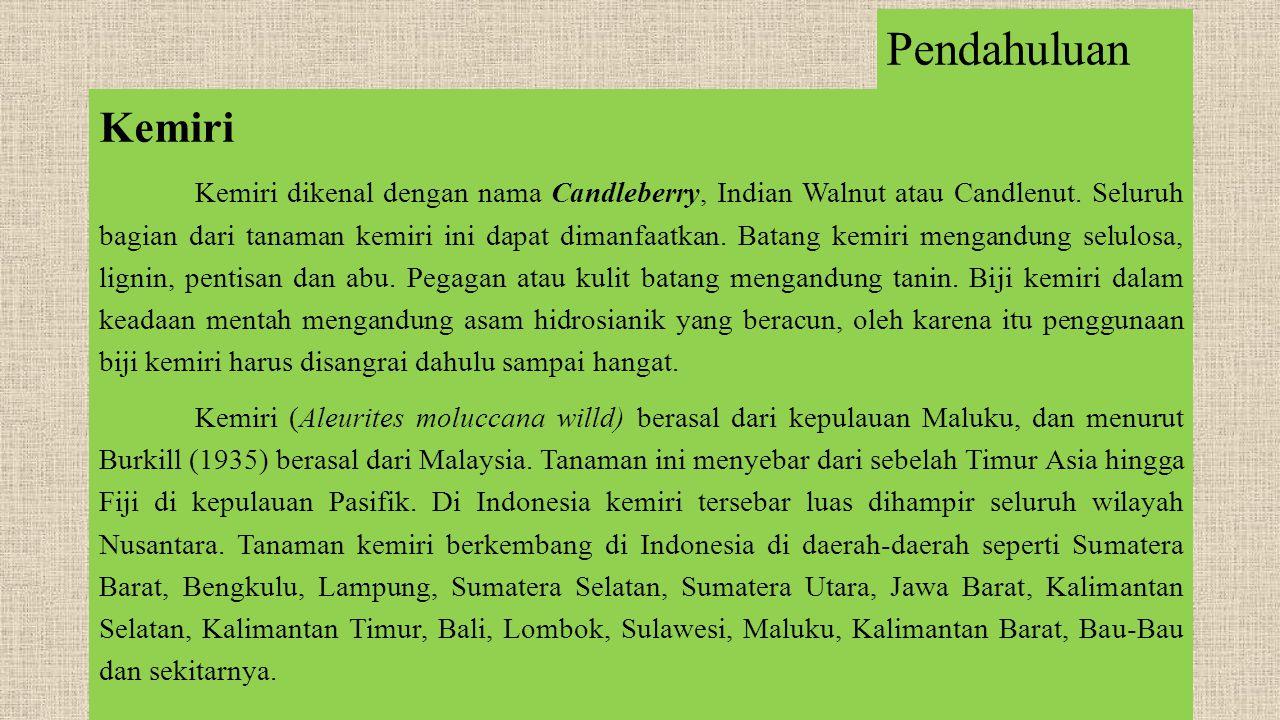 Pendahuluan Kemiri Kemiri dikenal dengan nama Candleberry, Indian Walnut atau Candlenut.