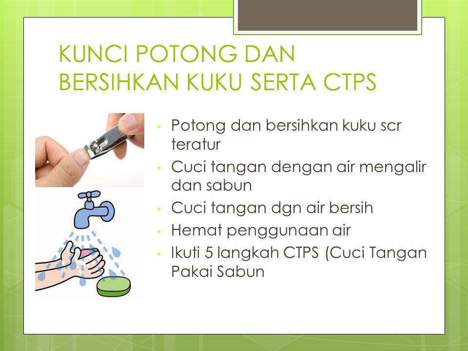 KUNCI POTONG DAN BERSIHKAN KUKU SERTA CTPS Potong dan bersihkan kuku scr teratur Cuci tangan dengan air mengalir dan sabun Cuci tangan dgn air bersih