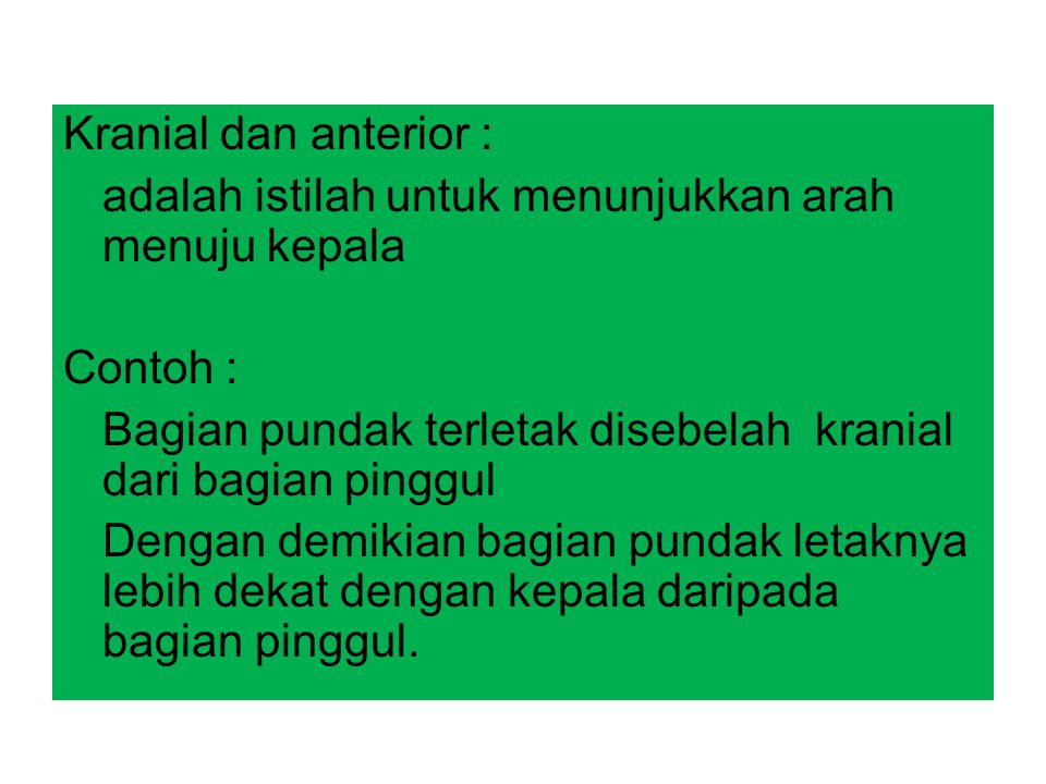 Kranial dan anterior : adalah istilah untuk menunjukkan arah menuju kepala Contoh : Bagian pundak terletak disebelah kranial dari bagian pinggul Denga