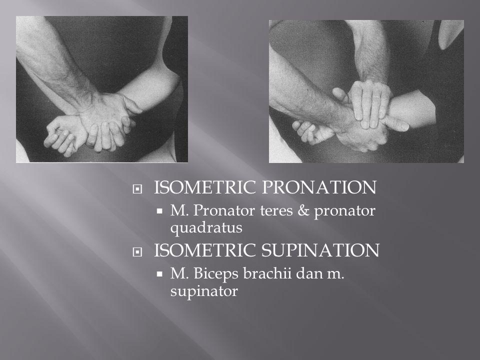  ISOMETRIC PRONATION  M. Pronator teres & pronator quadratus  ISOMETRIC SUPINATION  M. Biceps brachii dan m. supinator
