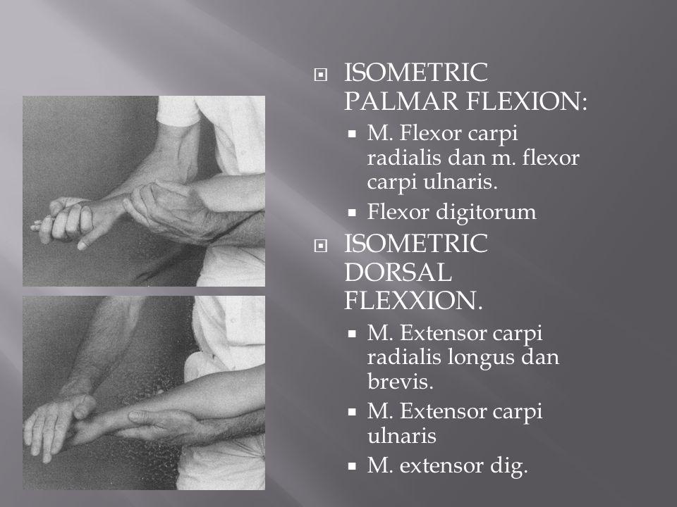  ISOMETRIC PALMAR FLEXION:  M. Flexor carpi radialis dan m. flexor carpi ulnaris.  Flexor digitorum  ISOMETRIC DORSAL FLEXXION.  M. Extensor carp