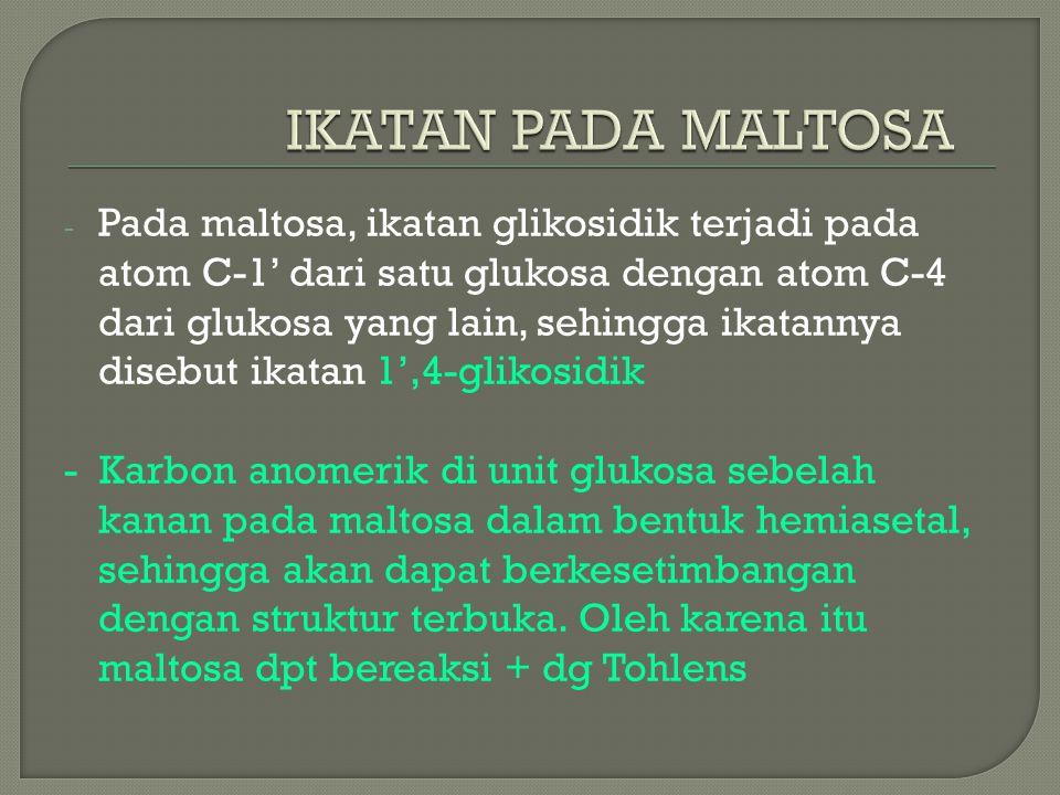 - Pada maltosa, ikatan glikosidik terjadi pada atom C-1' dari satu glukosa dengan atom C-4 dari glukosa yang lain, sehingga ikatannya disebut ikatan 1