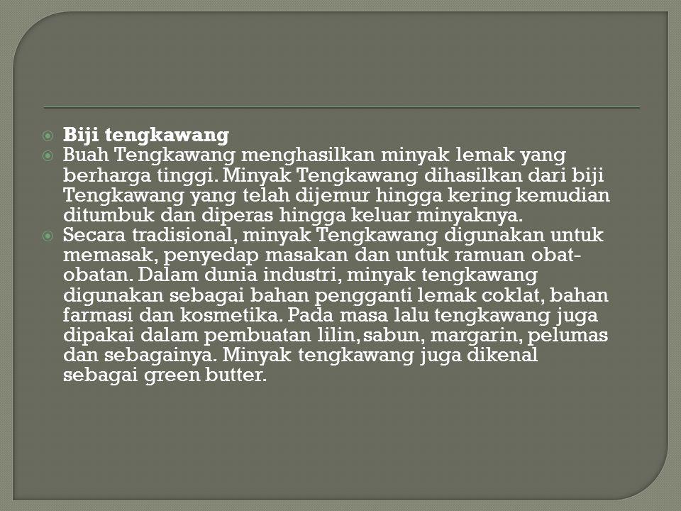  Biji tengkawang  Buah Tengkawang menghasilkan minyak lemak yang berharga tinggi.