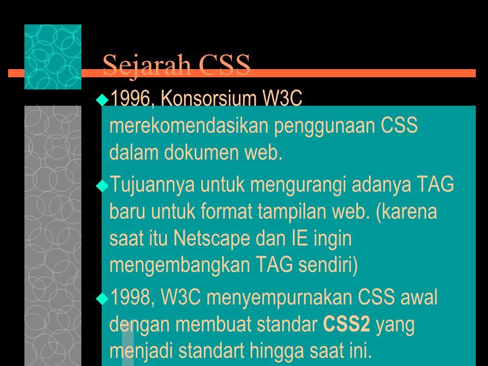External File CSS  Sama seperti embedded style tetapi dibuat pada file terpisah dengan ekstension.css  Sebuah dokumen bisa menggunakan lebih dari satu file CSS  Di- import (dipanggil) pada bagian HEAD  Ada dua cara: 1.