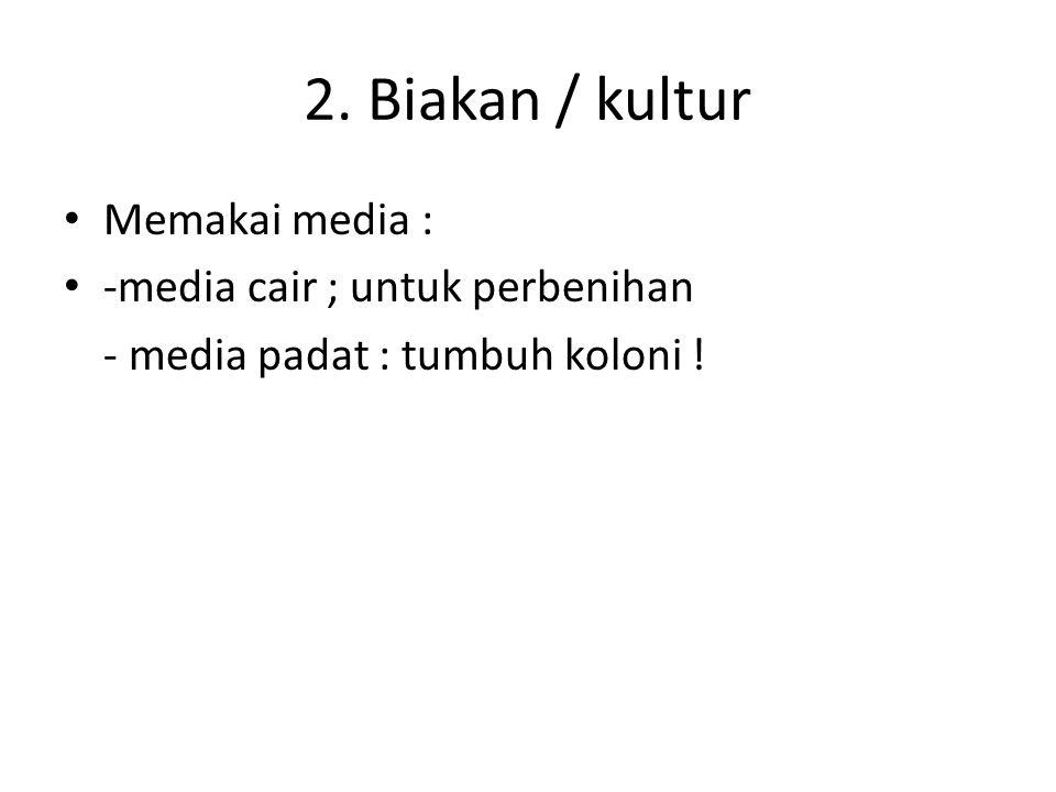 2. Biakan / kultur Memakai media : -media cair ; untuk perbenihan - media padat : tumbuh koloni !