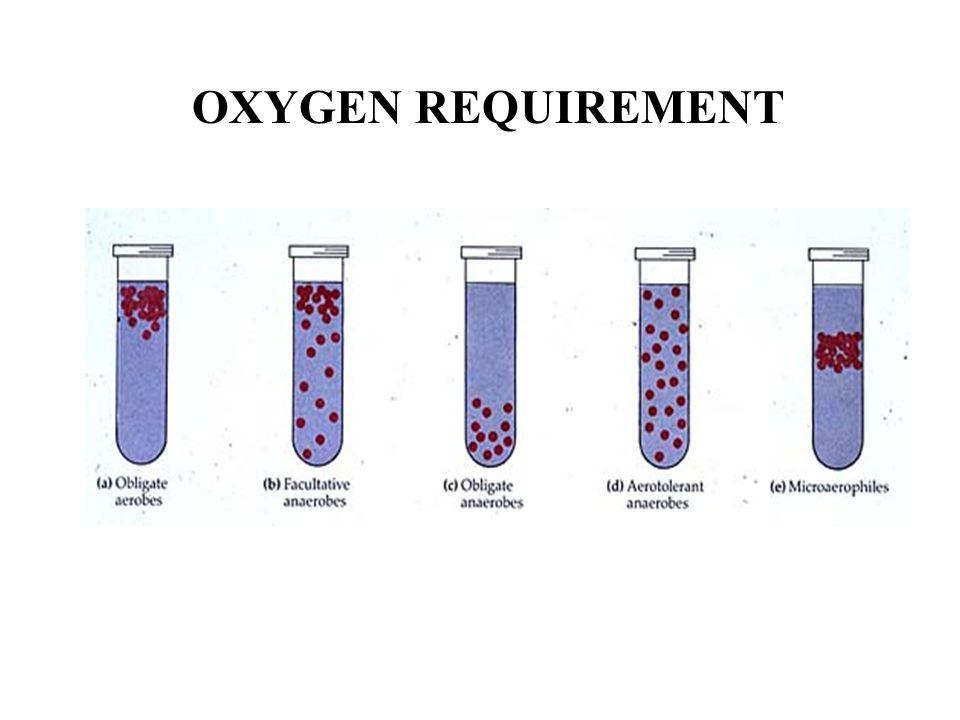 OXYGEN REQUIREMENT