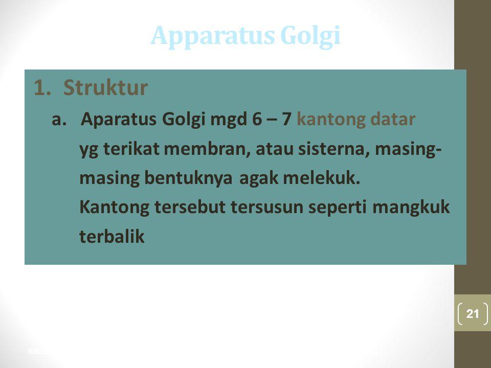 6/8/2015 21 nur anisah 1. Struktur a. Aparatus Golgi mgd 6 – 7 kantong datar yg terikat membran, atau sisterna, masing- masing bentuknya agak melekuk.