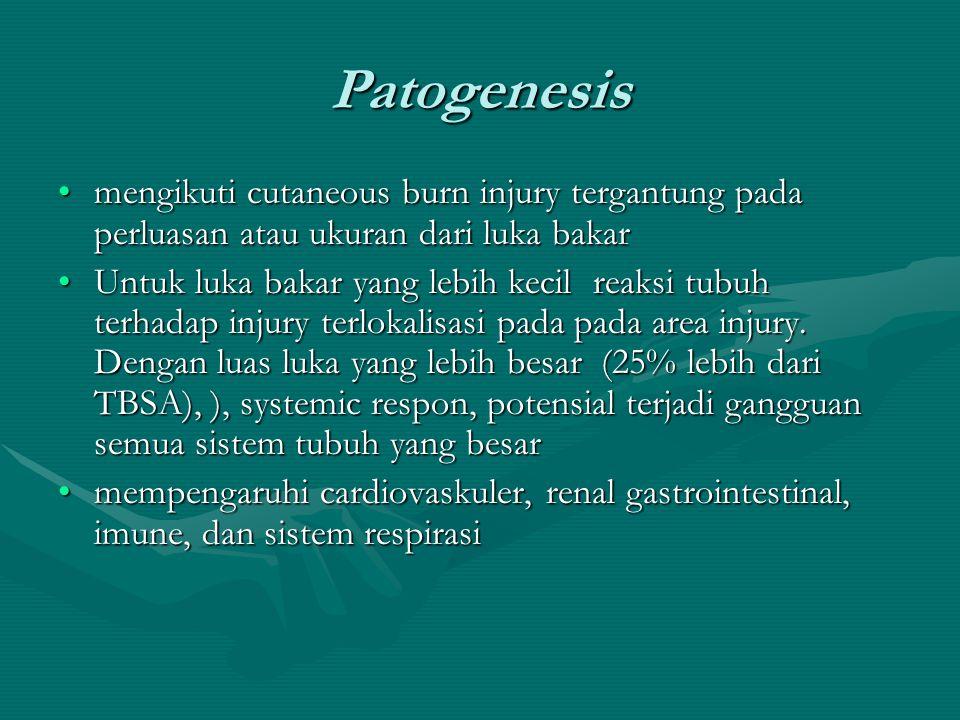 Patogenesis mengikuti cutaneous burn injury tergantung pada perluasan atau ukuran dari luka bakarmengikuti cutaneous burn injury tergantung pada perlu