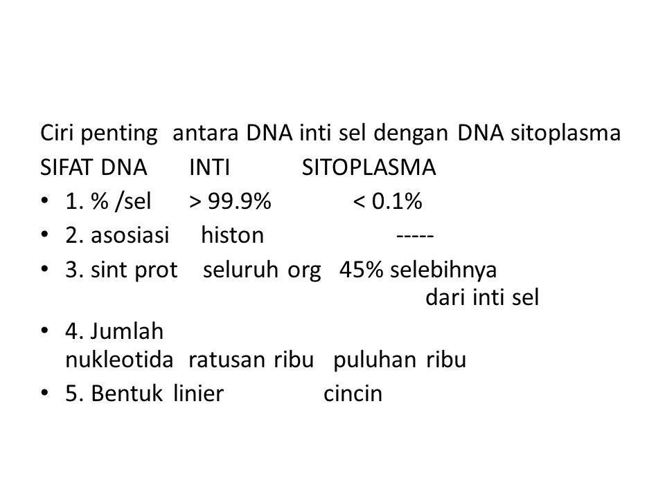 Ciri penting antara DNA inti sel dengan DNA sitoplasma SIFAT DNA INTI SITOPLASMA 1. % /sel > 99.9% < 0.1% 2. asosiasi histon ----- 3. sint prot seluru