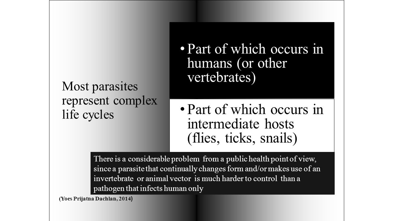 Most parasites represent complex life cycles Part of which occurs in humans (or other vertebrates) Part of which occurs in intermediate hosts (flies, ticks, snails) There is a considerable problem from a public health point of view, since a parasite that continually changes form and/or makes use of an invertebrate or animal vector is much harder to control than a pathogen that infects human only (Yoes Prijatna Dachlan, 2014 )