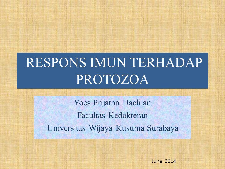 Protozoan diseases Jenis respons imun yang berkembang dan keefektifan respons bergantung dari, a.l.