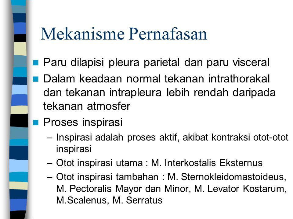 Mekanisme Pernafasan Paru dilapisi pleura parietal dan paru visceral Dalam keadaan normal tekanan intrathorakal dan tekanan intrapleura lebih rendah d