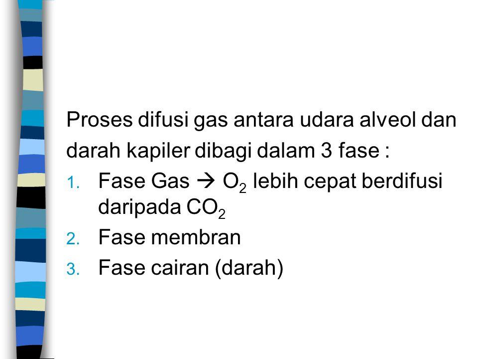 Proses difusi gas antara udara alveol dan darah kapiler dibagi dalam 3 fase : 1. Fase Gas  O 2 lebih cepat berdifusi daripada CO 2 2. Fase membran 3.