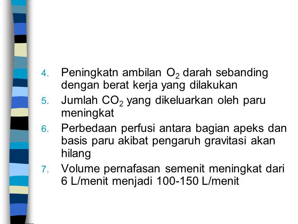 4. Peningkatn ambilan O 2 darah sebanding dengan berat kerja yang dilakukan 5. Jumlah CO 2 yang dikeluarkan oleh paru meningkat 6. Perbedaan perfusi a