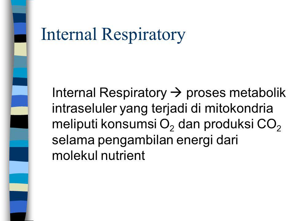 Internal Respiratory Internal Respiratory  proses metabolik intraseluler yang terjadi di mitokondria meliputi konsumsi O 2 dan produksi CO 2 selama p