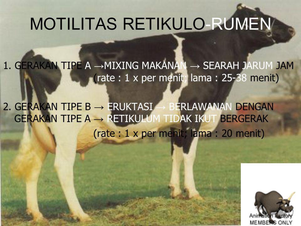 MOTILITAS RETIKULO-RUMEN 1. GERAKAN TIPE A → MIXING MAKANAN → SEARAH JARUM JAM (rate : 1 x per menit; lama : 25-38 menit) 2. GERAKAN TIPE B → ERUKTASI