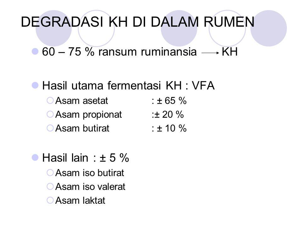 DEGRADASI KH DI DALAM RUMEN 60 – 75 % ransum ruminansia KH Hasil utama fermentasi KH : VFA  Asam asetat : ± 65 %  Asam propionat :± 20 %  Asam buti