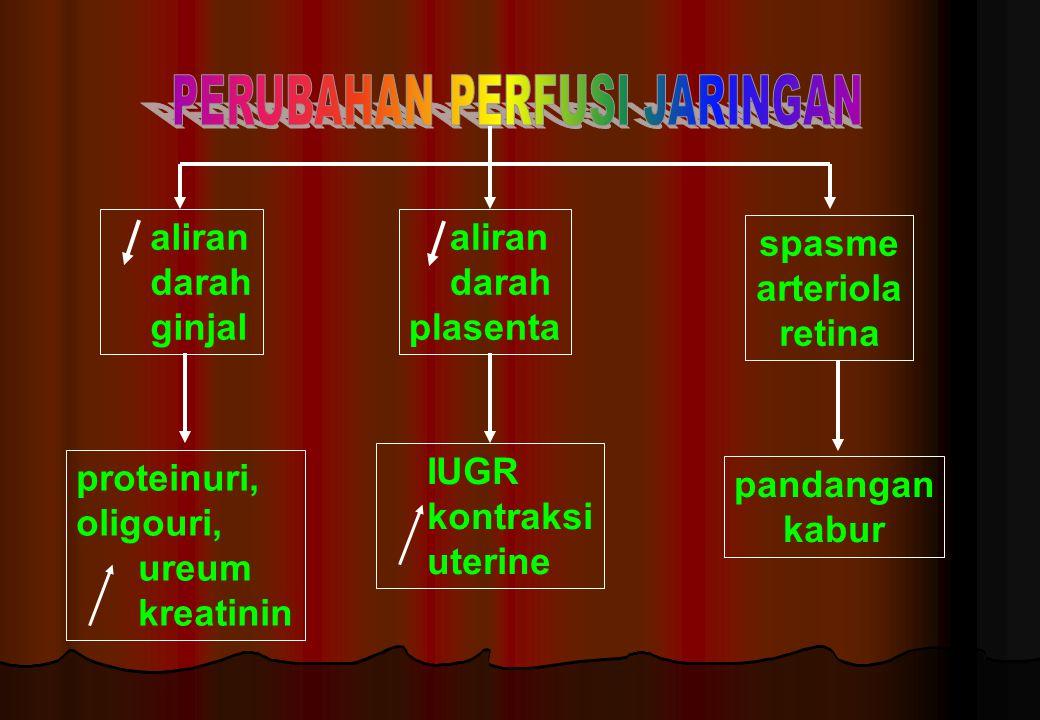aliran darah ginjal aliran darah plasenta spasme arteriola retina proteinuri, oligouri, ureum kreatinin IUGR kontraksi uterine pandangan kabur