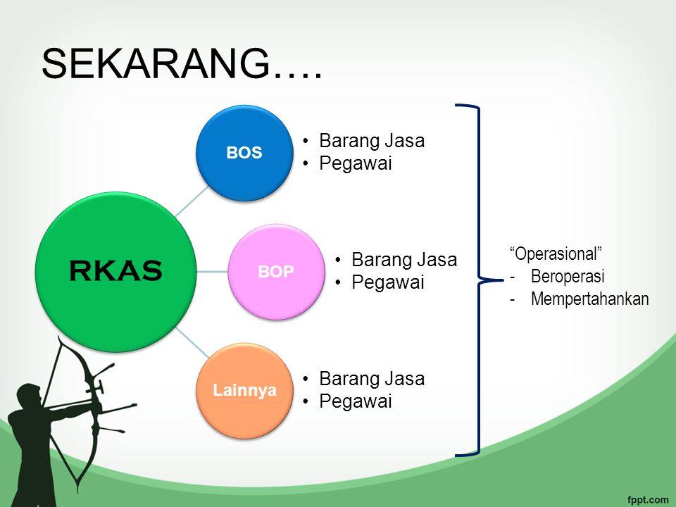 EDS - RKAS eds Program Kerja