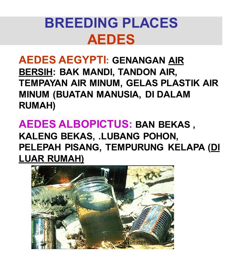BREEDING PLACES AEDES AEDES AEGYPTI : GENANGAN AIR BERSIH: BAK MANDI, TANDON AIR, TEMPAYAN AIR MINUM, GELAS PLASTIK AIR MINUM (BUATAN MANUSIA, DI DALA