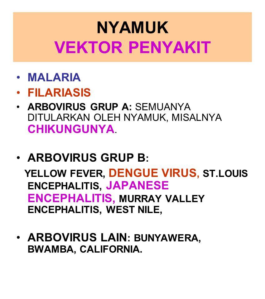 NYAMUK VEKTOR PENYAKIT MALARIA FILARIASIS ARBOVIRUS GRUP A: SEMUANYA DITULARKAN OLEH NYAMUK, MISALNYA CHIKUNGUNYA. ARBOVIRUS GRUP B : YELLOW FEVER, DE