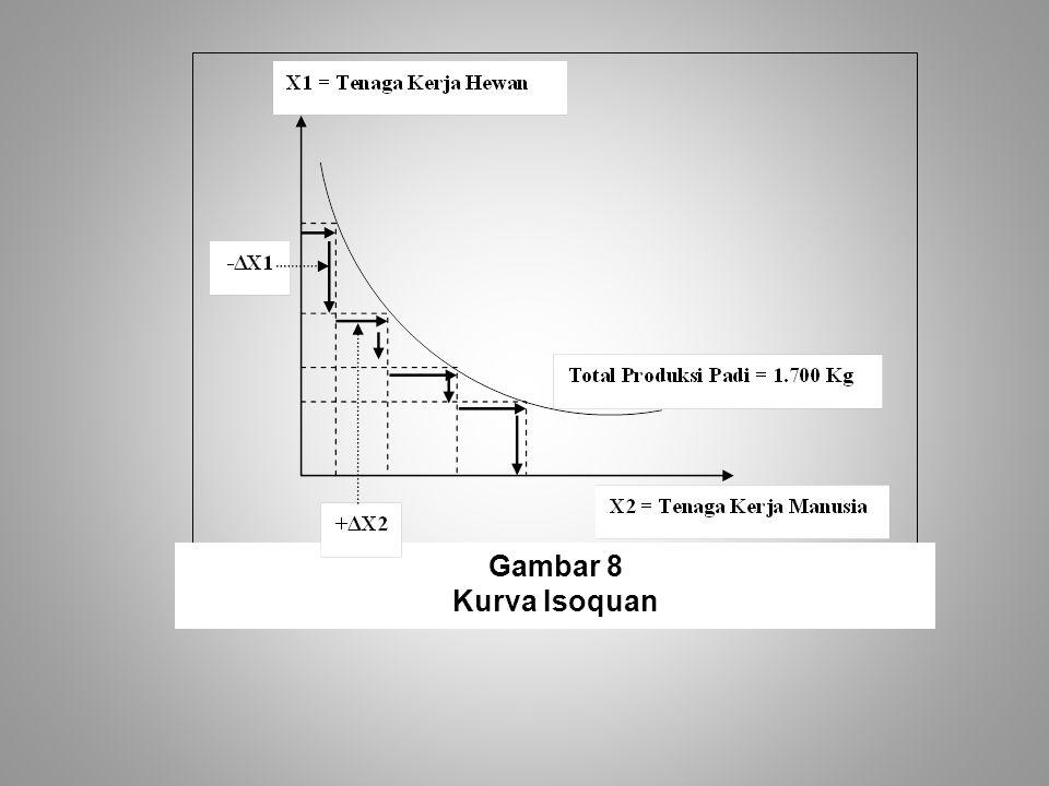 Gambar 8 Kurva Isoquan