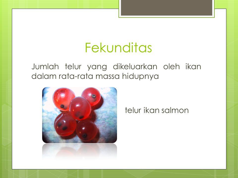 Faktor – Faktor Yang Mempengaruhi Fekunditas  komposisi telur,  faktor lingkungan : 1.