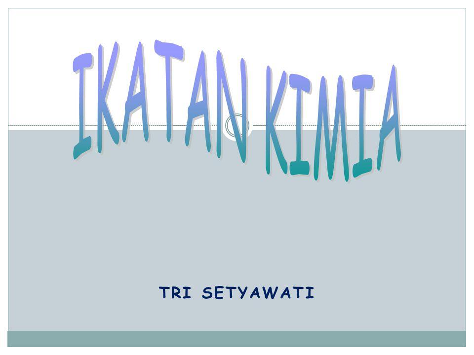 TRI SETYAWATI