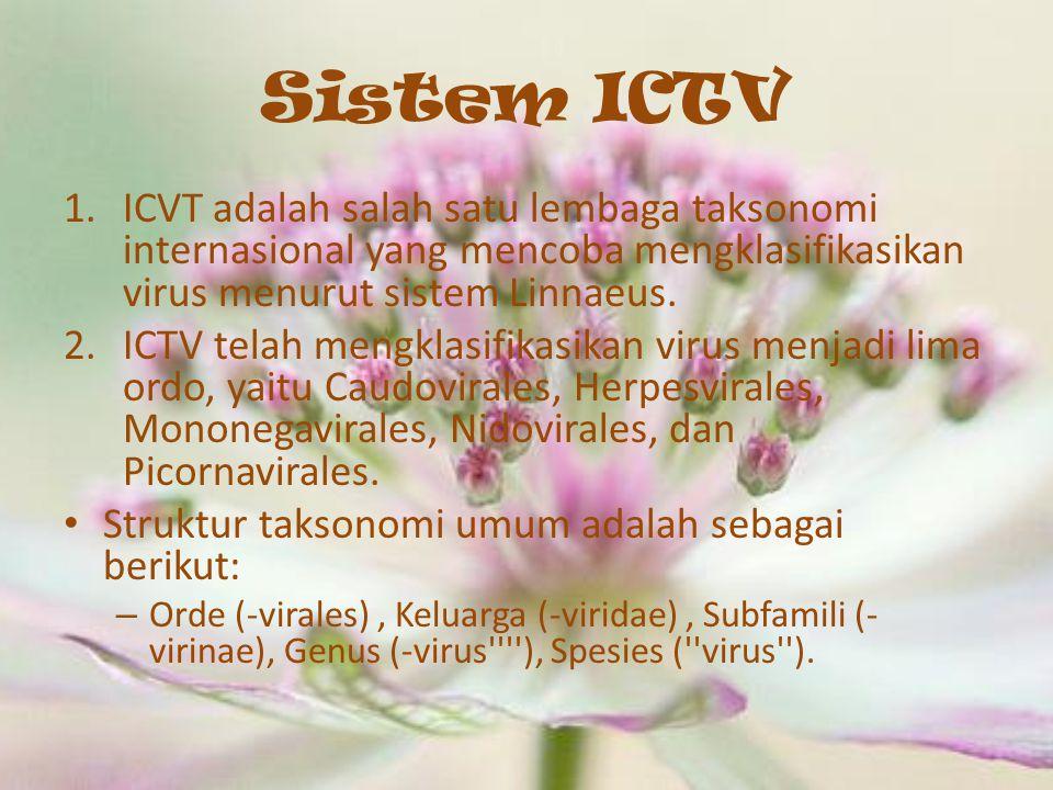 Sistem ICTV 1.ICVT adalah salah satu lembaga taksonomi internasional yang mencoba mengklasifikasikan virus menurut sistem Linnaeus. 2.ICTV telah mengk