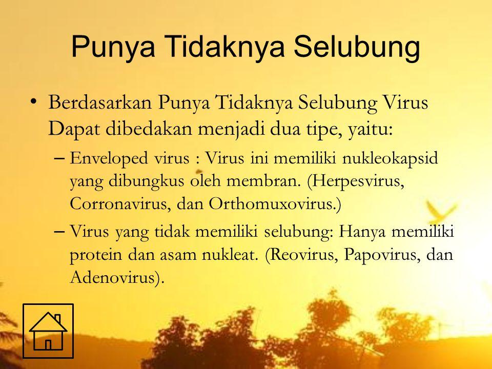 Punya Tidaknya Selubung Berdasarkan Punya Tidaknya Selubung Virus Dapat dibedakan menjadi dua tipe, yaitu: – Enveloped virus : Virus ini memiliki nukl