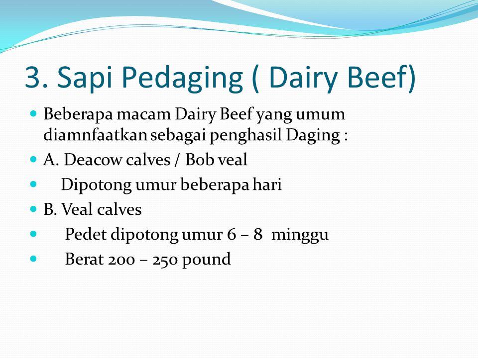 3. Sapi Pedaging ( Dairy Beef) Beberapa macam Dairy Beef yang umum diamnfaatkan sebagai penghasil Daging : A. Deacow calves / Bob veal Dipotong umur b