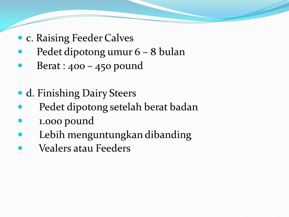 c. Raising Feeder Calves Pedet dipotong umur 6 – 8 bulan Berat : 400 – 450 pound d. Finishing Dairy Steers Pedet dipotong setelah berat badan 1.000 po