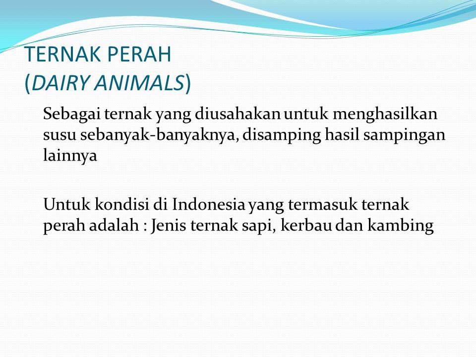 TERNAK PERAH (DAIRY ANIMALS) Sebagai ternak yang diusahakan untuk menghasilkan susu sebanyak-banyaknya, disamping hasil sampingan lainnya Untuk kondis