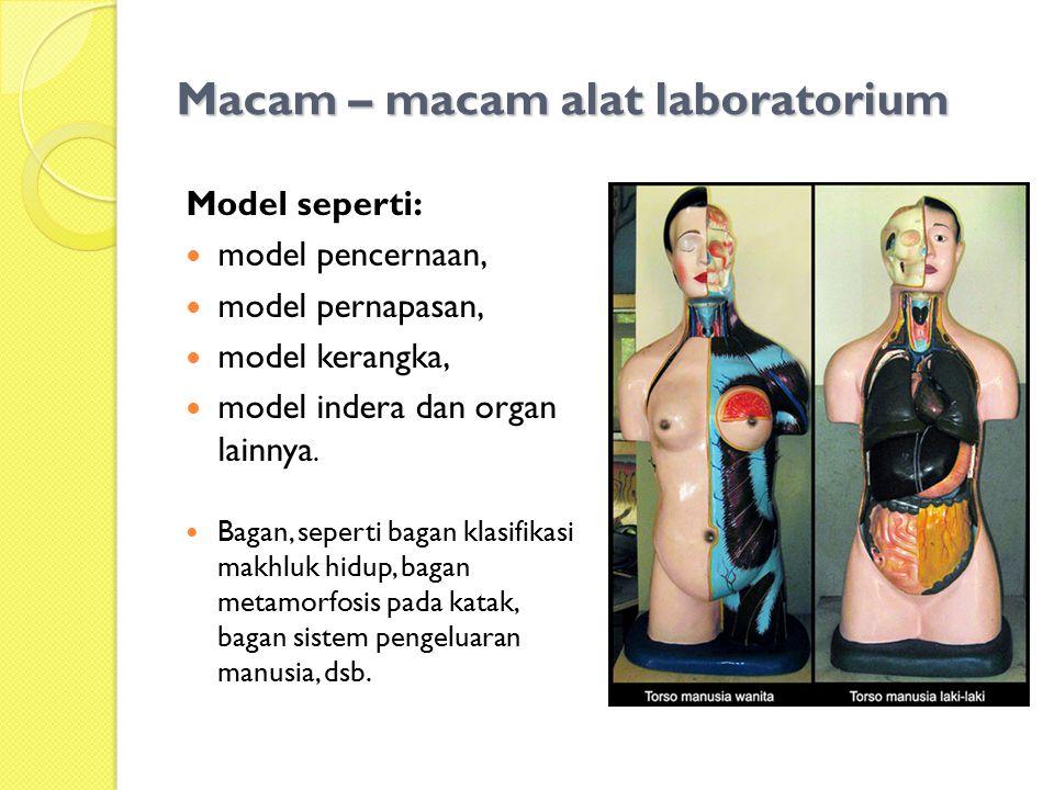 Macam – macam alat laboratorium Model seperti: model pencernaan, model pernapasan, model kerangka, model indera dan organ lainnya. Bagan, seperti baga