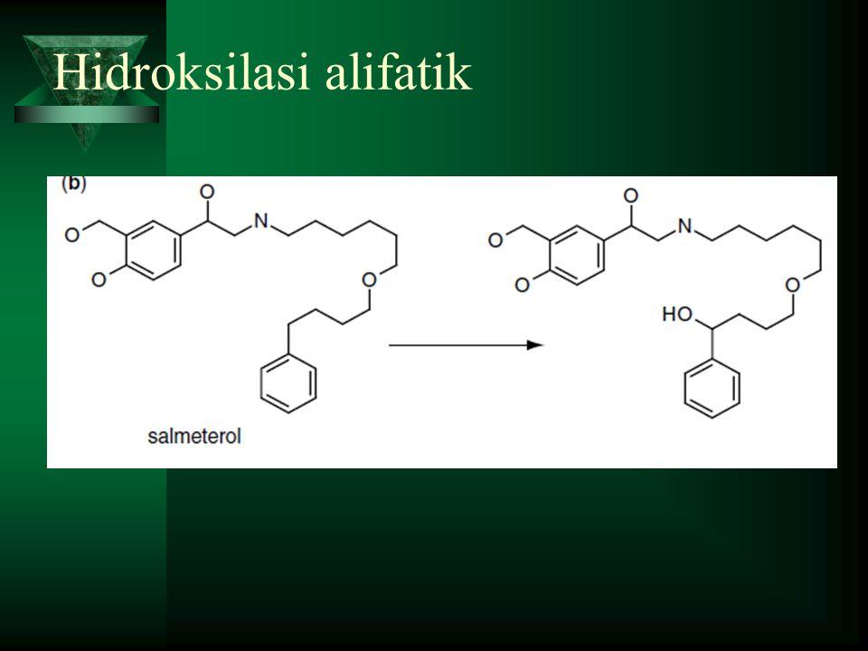 Hidroksilasi alifatik