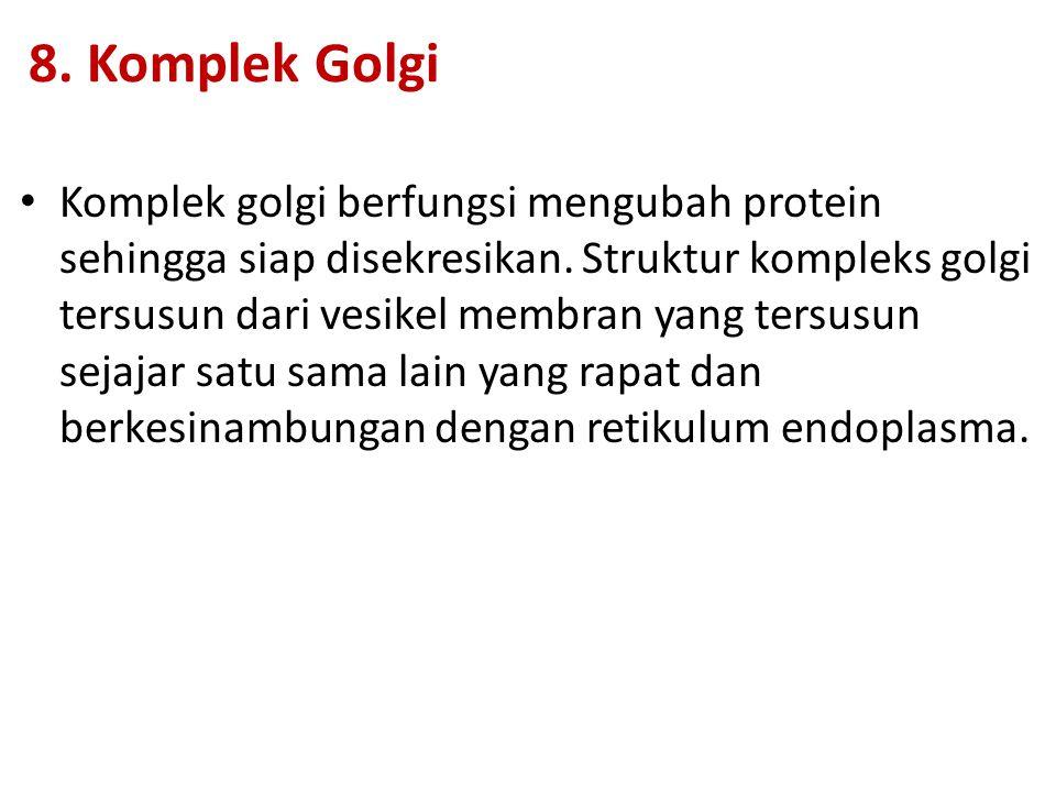 8. Komplek Golgi Komplek golgi berfungsi mengubah protein sehingga siap disekresikan. Struktur kompleks golgi tersusun dari vesikel membran yang tersu