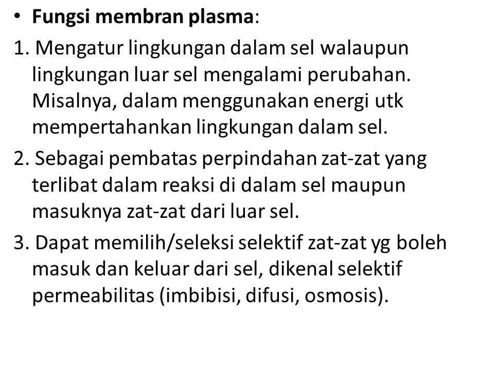 Fungsi membran plasma: 1.