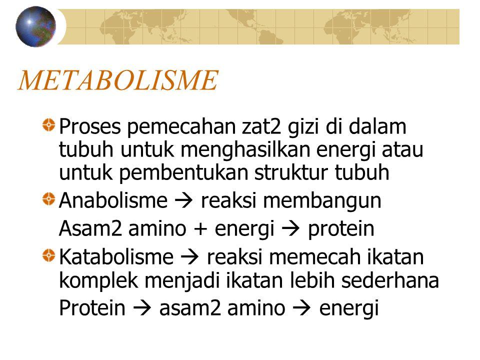 METABOLISME Proses pemecahan zat2 gizi di dalam tubuh untuk menghasilkan energi atau untuk pembentukan struktur tubuh Anabolisme  reaksi membangun Asam2 amino + energi  protein Katabolisme  reaksi memecah ikatan komplek menjadi ikatan lebih sederhana Protein  asam2 amino  energi