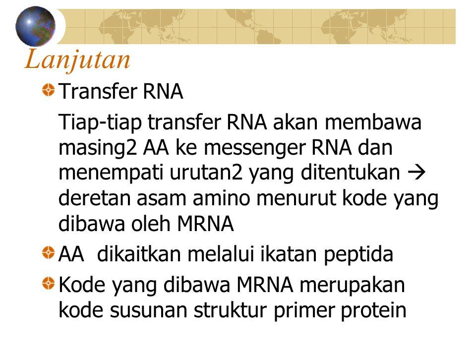 Lanjutan Transfer RNA Tiap-tiap transfer RNA akan membawa masing2 AA ke messenger RNA dan menempati urutan2 yang ditentukan  deretan asam amino menurut kode yang dibawa oleh MRNA AA dikaitkan melalui ikatan peptida Kode yang dibawa MRNA merupakan kode susunan struktur primer protein